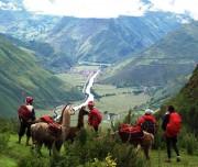 Cusco Sacred Valley plus locals and lamas