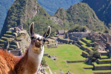 MOST POPULAR TOURS - Machu Picchu by train
