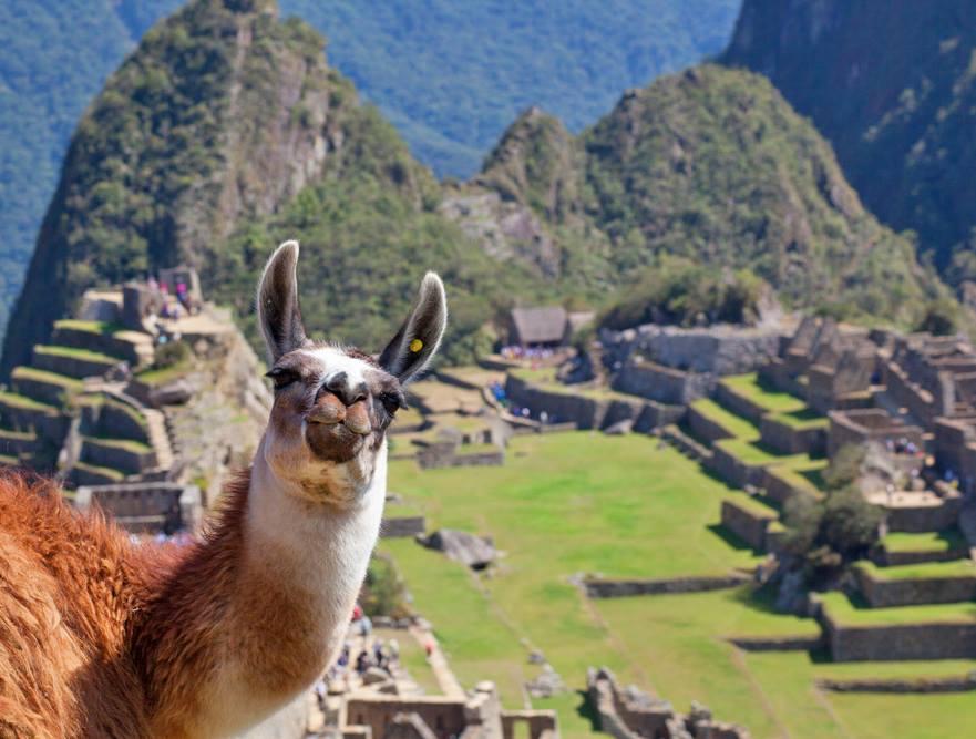 MOST POPULAR TOURS - Machu Picchu by train